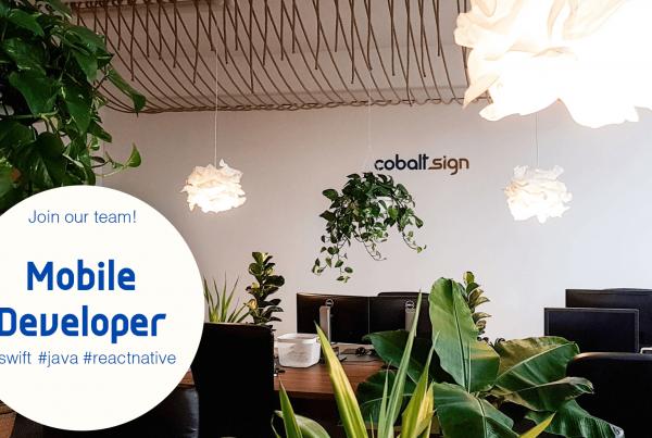 Cobalt Sign - Mobile Developer Jobs
