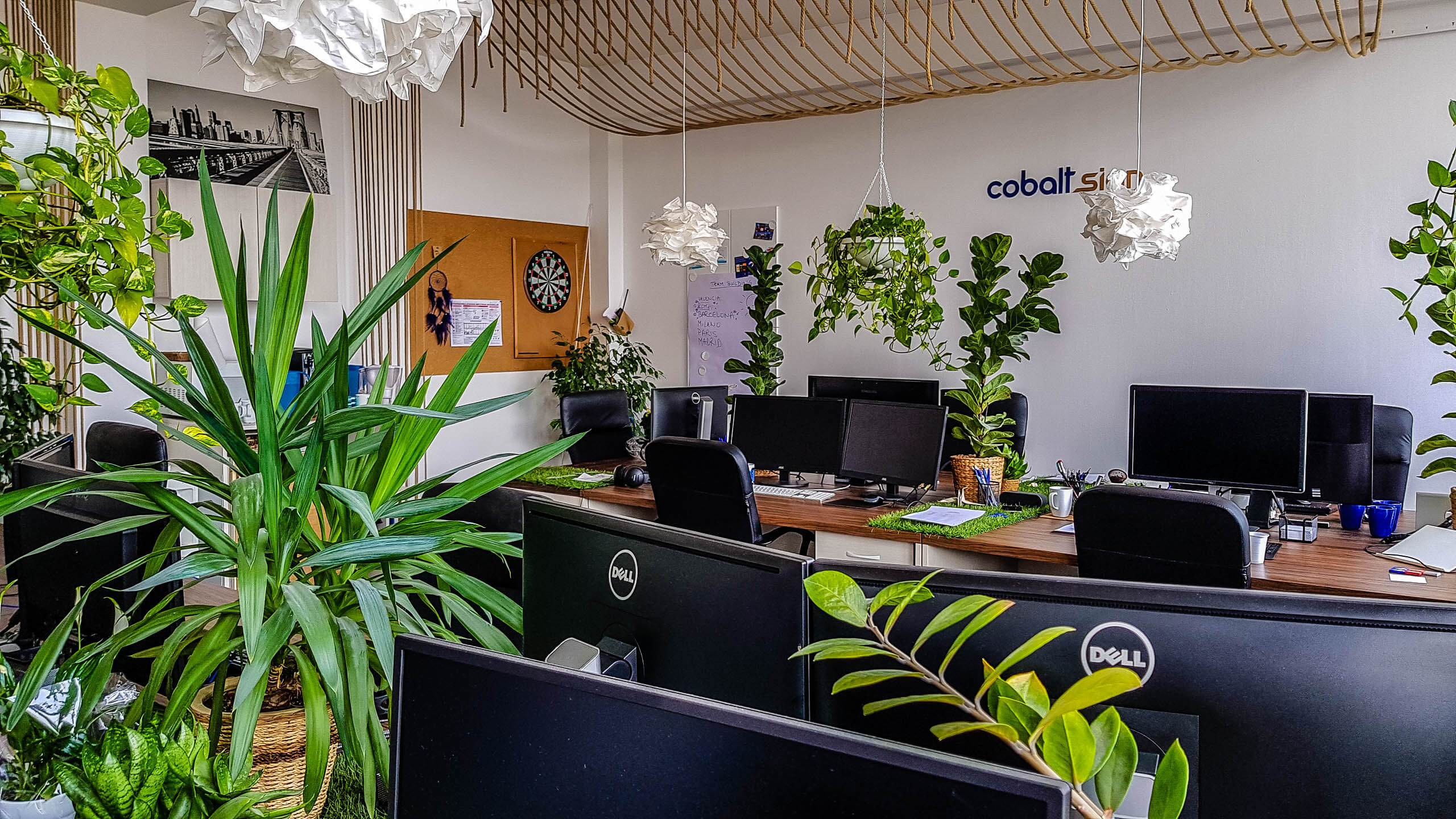 Cobalt Sign - old office (12 of 17)