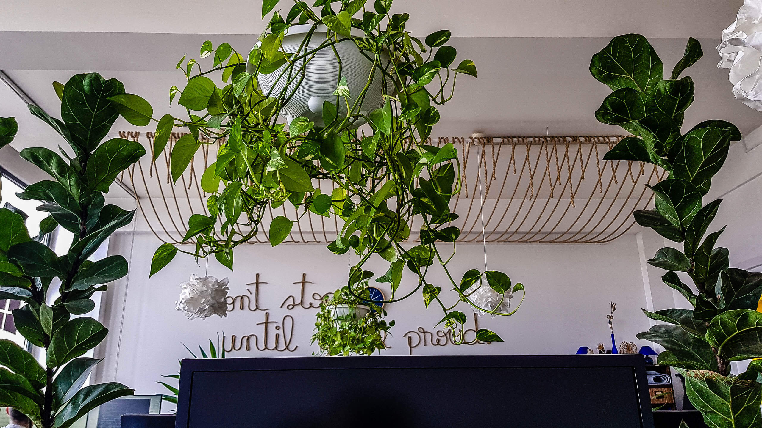 Our Previous Office – Plants, Decorations and a Personal Touch